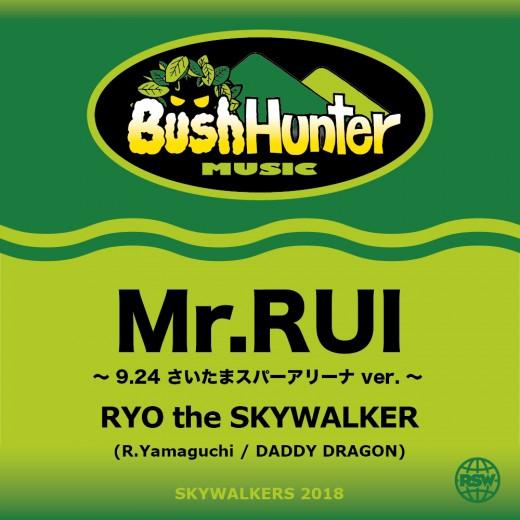 MR.RUI_JK
