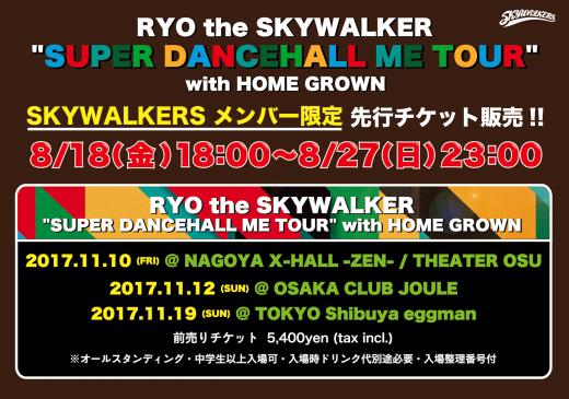 SDM-TOUR_SKYS先行_